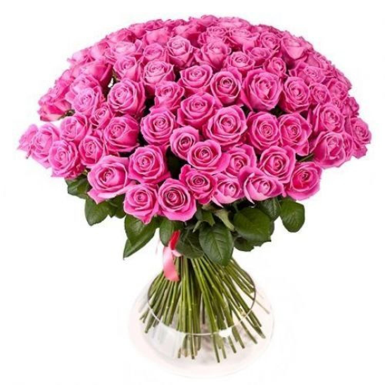 Букет из 79 роз